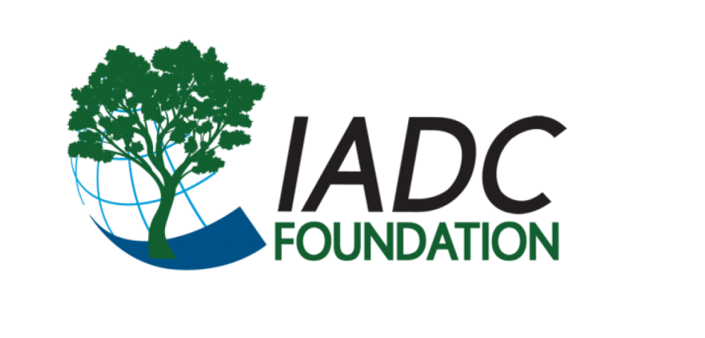2017 Foundation Logo - web with no background.png